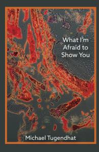 What_Im_Afraid_to_S_Cover_for_Kindle